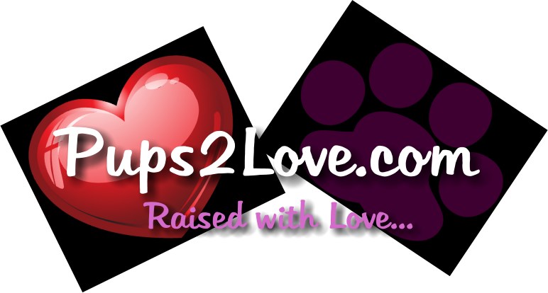 Pups2Love.com Raised with Love...